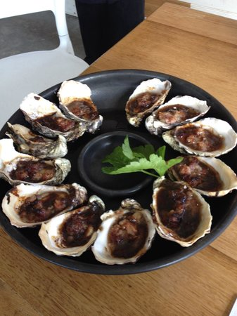 Get Shucked Oyster - Accommodation Daintree