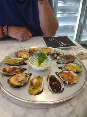 Tarkine Fresh Oysters - Accommodation Daintree