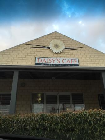 Daisy's Cafe - Accommodation Daintree