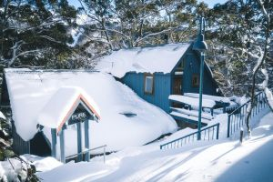 Pure Chalet Thredbo - Accommodation Daintree