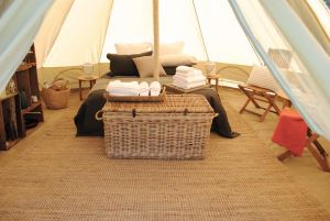 Cosy Tents - Daylesford - Accommodation Daintree