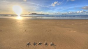 BIG4 Beachcomber Coconut Holiday Park - Accommodation Daintree